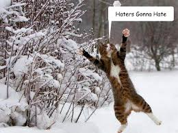 Hate Snow Meme - haters gonna hate cat in snow quickmeme