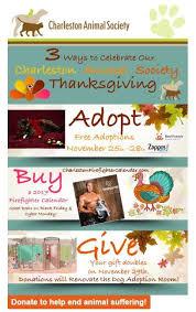 610 best pet adoption marketing ideas images on pet