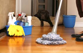 how to spring clean your house in a day spin mop a generation away from the old styled mop kill the dust
