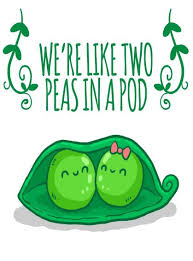 2 peas in a pod two peas in a pod digital we re like two peas