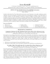 sample resume for chartered accountant sample resume for government accountant frizzigame federal government resume samples resume format 2017 gorgeous