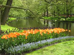 keukenhof dutch tulip festival spring garden conscious travel