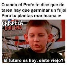 Memes De Marihuanos - 25 best memes about marihuana marihuana memes
