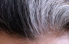 frizzy aged hair aging hair that is frizzy dry signs best products for texture