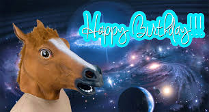 Horse Birthday Meme - flashing happy birthday gif find share on giphy