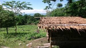 goat house design in the philippines youtube