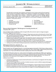Construction Vice President Resume Understanding A Generally Accepted Auditor Resume