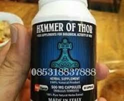 obat kuat hammer of thor thor hammer jual obat kuat hammer of