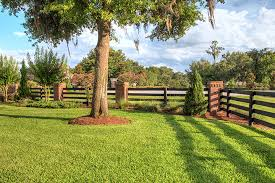 Lawn And Landscape by Professional Photography Gallery Lakeland Florida Torch Designs
