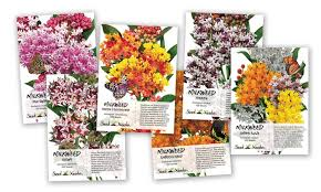 seed packets milkweed seed packet assortment 6 individual packets groupon