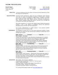 web developer resumes resume exle web programmer copy professional web developer resume