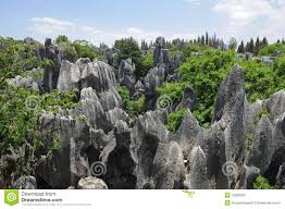 natural wonders china stone forest royalty free stock photo