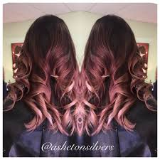 rose gold lowlights on dark hair 14 best hair images on pinterest colourful hair hair colors and