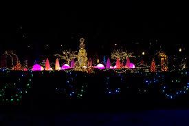 phipps conservatory christmas lights phipps winter light show father pitt