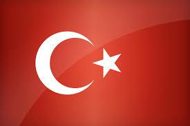 Flag Of The World Flag Of Turkey Find The Best Design For Turkish Flag