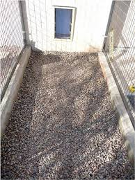 Backyard Flooring Ideas by Best 20 Dog Kennel Flooring Ideas On Pinterest Dog Kennels Dog