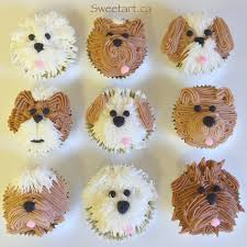 cupcake magnificent dog cupcakes sydney dog friendly birthday