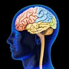 significado de imagenes sensoriales wikipedia umbrales sensoriales definición