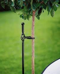 tree stakes best 25 tree stakes ideas on tree garden garden