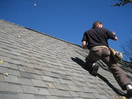 Cougar Paws Roofing Shoes Reviews by Home Inspection Action Shots Structure Tech Home Inspections