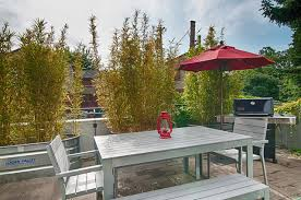 Potted Plants For Patio Privacy Screen Potted Plants Houzz