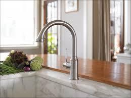 kohler coil spring faucet