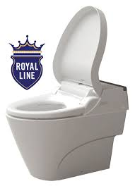 Toilet With Bidet Seat 49 Best Bidet Images On Pinterest Toilets Smart Toilet And