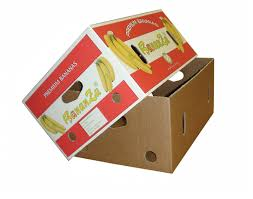 fruit boxes fruit cartons boxes fruit packaging boxes corrugated boxes
