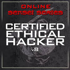 online sensei series secure ninja