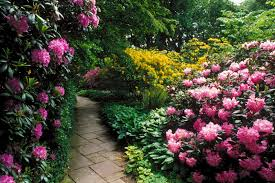 pictures of beautiful gardens with flowers alfiealfa com