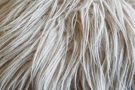 tappeto a pelo lungo come pulire tappeti a pelo lungo i consigli donnad