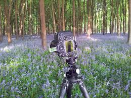 tutorial fotografi landscape cara mendapatkan foto landscape yang super tajam digital fotografi