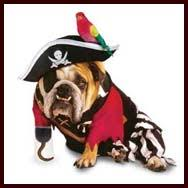 bulldog costumes and clothes halloween dog costumes