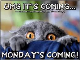 Funny Sunday Memes - omg mondays coming pictures photos and images for facebook tumblr