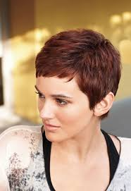 red short cropped hairstyles over 50 best 25 red pixie cuts ideas on pinterest red hair pixie cut