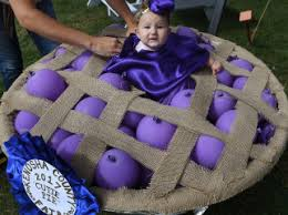 Homemade Baby Halloween Costume Ideas 250 Cutest Homemade Baby Halloween Costume Ideas