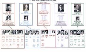 family trees family stories family photos