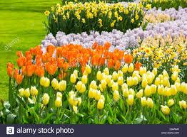 the world famous keukenhof gardens near lisse holland the best