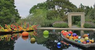 Dallas Arboretum And Botanical Garden Chihuly Exhibit Picture Of Dallas Arboretum Botanical Gardens
