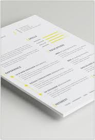 Indesign Resume Template 30 Best Professional Resume Templates Collection Web Creative All