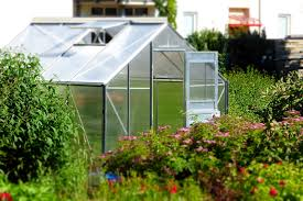 How To Build A Small House How To Build A Small Greenhouse In 8 Easy Steps Backyard Garden