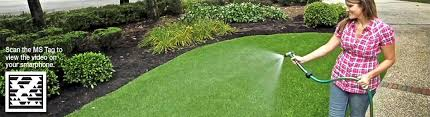 lawn care programs for do it yourself care and maintenance synlawn