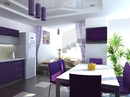 fresh modern purple kitchen taste