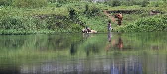 proxi bon plan vision plus à roanne réduction a bit of aranmula stories from my rural expeditions