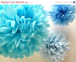 cinderella decorations birthday party decorations paper pompoms 3 poms frozen