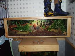 Terrarium Coffee Table by Best 25 Snake Tanks Ideas Only On Pinterest Reptile Terrarium