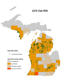 Mi County Map Map Shows Where Oak Wilt Disease Has Been Found In Michigan