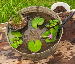 articles with self watering plant pots how do they work tag water