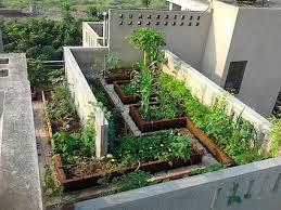 terrace gardening google image result for http www cityfarmer info wp content