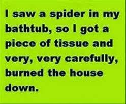 I Saw A Spider Meme - 22 meme internet i saw a spider in my bathtub so i got a piece of